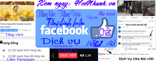 Dich Vu Facebook giá rẻ Hieu Qua
